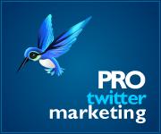professional-twitter-marketing