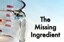 the-missing-ingredient